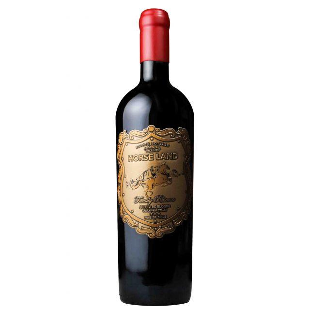 智利空加瓜谷马地庄园家族珍藏红葡萄酒红酒
