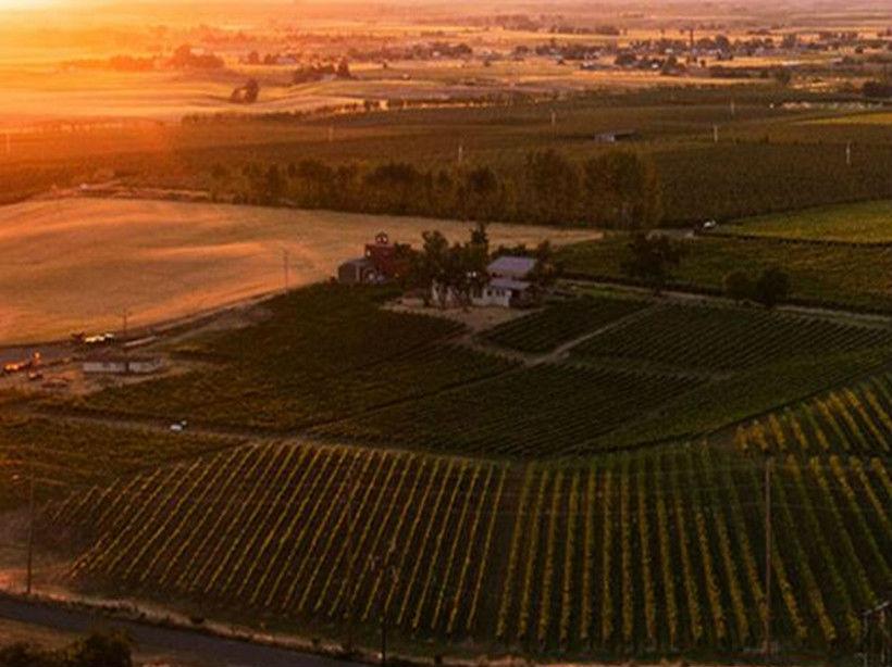 七山酒庄Seven Hills Winery