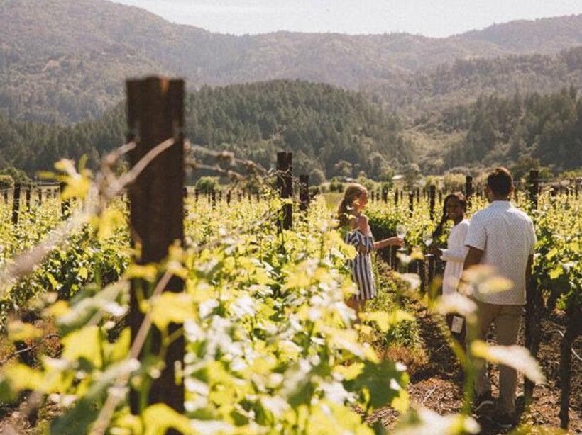 普罗伦斯酒庄Provenance Vineyards